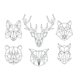 Low poly animals heads Triangular thin line vector image
