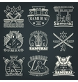 Dark Samurai Emblems vector image