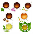 set tea vector image vector image