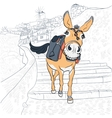 Donkey in Oia Santorini vector image vector image