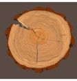 Annual tree growth rings with brown tonesdrawing vector image