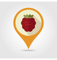 Raspberry flat pin map icon Berry fruit vector image
