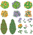Set of garden plants with flowers vector image