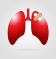 lungs with plaster vector image