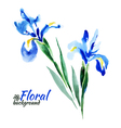 Beautiful watercolor paint blue irises vector image