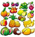fruit vector image