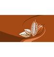 cocoa bean vector image