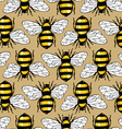 Bee honey pattern vector image