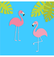 Two pink flamingo set Exotic tropical bird Zoo vector image