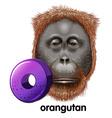A letter O for orangutan vector image