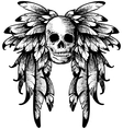 wings with skull vector image