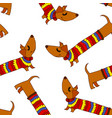 colored dog background vector image