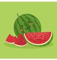 Cute Watermelon Fruit Mascot Green vector image