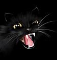 evil black cat halloween background vector image