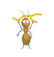 funny brown ant that holds small dry branch vector image
