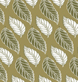 cacao leaves background pattern vector image vector image