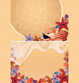 two backgrounds with seashells on the beach vector image