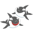 Killer whales vector image vector image