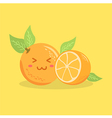 Cute Orange Fruit Face vector image