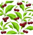 floral and fruit background vector image