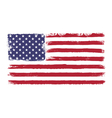 stars and stripes vector image vector image