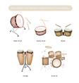 Set of Drum Instruments with Drumsticks vector image