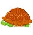 Turtle cartoon hiding in his shell vector image