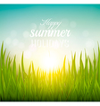 Beautiful summer background with grass and sun vector image