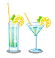set with two glasses for martini and mojito vector image