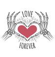 skeleton pink heart hands vector image