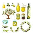 Olive Icon Set vector image