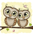 Greeting card with Two Owls vector image
