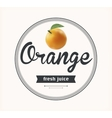 Orange juice natural product vector image