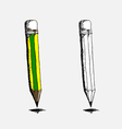 two sharpened detailed pencils vector image