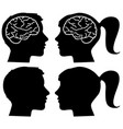 human profiles silhouettes with brain vector image