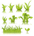 leaves grass and lawn set vector image
