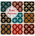 Royal decorative ornate patterns set vector image