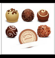 Set of chocolates vector image