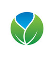 circle leaf eco nature logo vector image