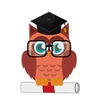 owl cartoon with graduation cap and diploma icon vector image