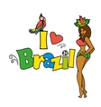 I love Brazil illutration vector image