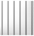 metal prison bars isolated on transparent vector image