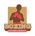 big professional boxing championship logotype with vector image