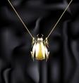 jewelry beetle vector image