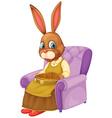 Rabbit sitting vector image
