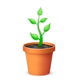 The flowerpot vector image