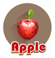 red apple icons of triangles vector image vector image