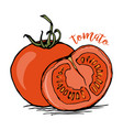 whole and half tomato sketch vector image
