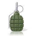grenade 01 vector image vector image