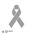 brain cancer ribbon vector image